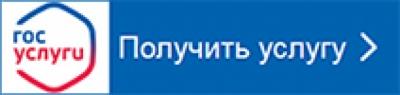 http://pyterka.ru/upload/pupils/information_system_70/3/3/9/1/9/item_339197/item_339197.jpg?rnd=539816289